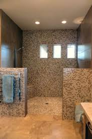 Bathroom Bathroom With Open Shower Concept Remodel Board By