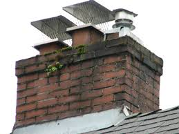why a chimney cap might save your chimney s life louisville ky all american chimney