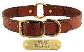 1 best er 1 leather dog collar with name plate