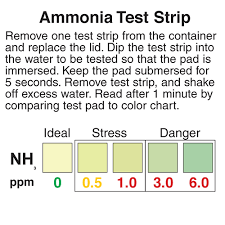Tetra Ammonia Test Strips Color Chart Ammonia Test Strips Precision Laboratories