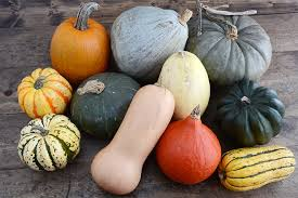 Pumpkin Varieties Chart Winter Squash Guide Co Op Stronger Together