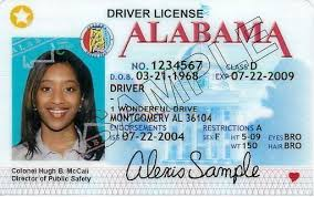 Cv Emirates Uae Services Id Closures Expats For Get S Your Alabama Official Out Card And Digital Id Resident Identity Example S Office Resume Voter Renamed Uk Black License - Perfect Letter Driver Card Sk