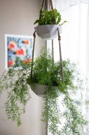 Hanging Planters 367 Best Fabfinds No 3 Hanging Planters Images On Pinterest