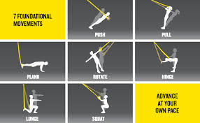 Trx Exercises Chart Trx All In One Suspension Training Bodyweight Resistance System Full Body Workouts For Home Travel And Outdoors Build Muscle Burn Fat Improve