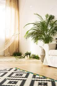 Modernes Wohnzimmer Mit Couch, Hängematte, Pflanzen, Musterteppich  Standard Bild   78950109