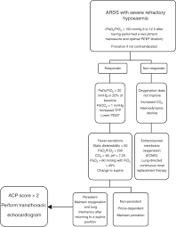 Ards Pathophysiology Flow Chart The Maximum Expression Of Hypoxia And Hypoventilation Acute