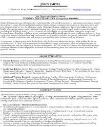 Government Resume Examples Ajrhinestonejewelry Com