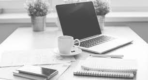 Ladybug Design Career Development Services Resume Writing