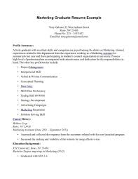Resume Sample For Fresh Graduate Accounting Template S