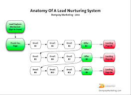 Lead Nurturing How To Nurture Your Organic Leads