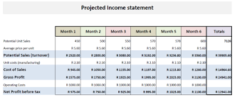 Business Financial Plan: Income Statement