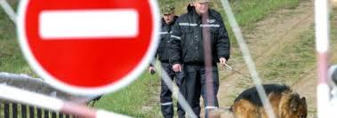 Транспортным ветеринарным и фитосанитарным контролем на границе  Государственному таможенному комитету Беларуси будут переданы в оперативное подчинение государственные контрольные органы транспортная инспекция
