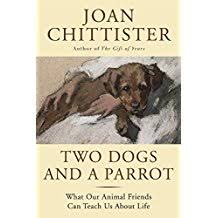 com joan chittister essays pets animal care books 1 result for books crafts hobbies home pets animal care essays joan chittister