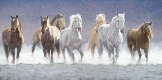 vastu running seven horse painting horses running free horse horse paintings and paintings