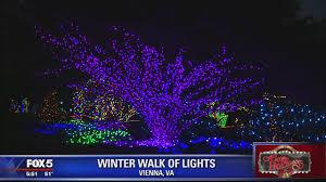 Meadowlark Gardens Winter Walk Of Lights Winter Walk Of Lights At Meadowlark Fox 5 Dc