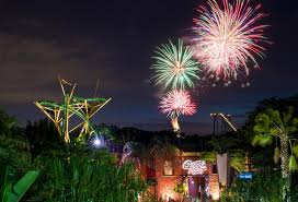 starting this friday guests can enjoy a dazzling firework show and live entertainment every weekend to cap off their evening at summer nights