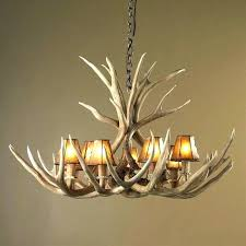 how with antler chandelier canada