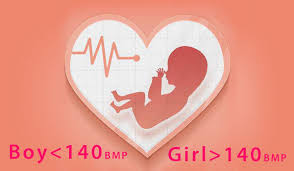 Popular Ways To Predict Babys Gender Fetal Heart Rate Boy