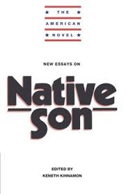 native son essays notes of a native son essay by aqv197 anti essays