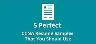 Ccna Cv Ccna Resume Samples Top 5 Ccna Resume Templates In Doc