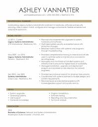 Example Professional Resume Free Letter Templates