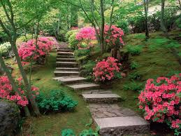 Japanese Garden Plants Lawn Garden Mountainside Japanese Garden Design With Stone