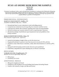 Resume Without Work Experience Sample Student Resume With No Working ...