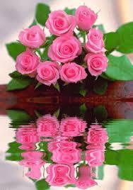 Resultado de imagem para rosas pequenas , alegria, carinho gratidão gifs