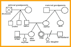 Make A Genogram Surcreative Co