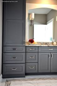 Cabinet Designs For Bathrooms Awesome Design