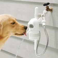 get rid of that putrid bowl of water that s been sitting in your back yard growing the next strain of the super flu the contech pet drinking fountain is a