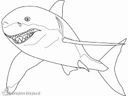 Kleurplaat Crossmotor Nieuw Shark Kleurplaten Beste Van Grote Witte