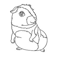 These free animal coloring pages designed very simply by combining basic geometric shapes and form the simple animal shape. Top 25 Free Printable Coloring Pages Of Animals Online