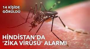 """Hindistan'da """"Zika Virüsü"""" alarmı verildi: 14 kişide tespit edildi!"""