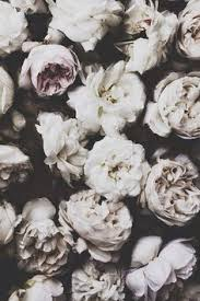black and white background images hipster.  White Black And White Hipster Tumblr Backgrounds  Google Search Intended Black And White Background Images Hipster S