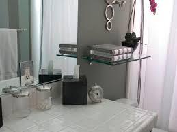 Bathroom Shelf Decorating Ideas  Modern Modern Bathroom Shelf - Modern bathroom shelving