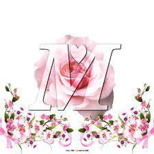 Write Name On Pink Rose M Name Dp Wallpaper