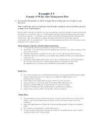 regional s plan template sample s territory business plan template management s business plan template