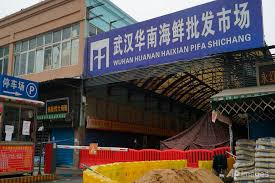 On the menu at Wuhan virus market: Rats and live wolf pups - CNA