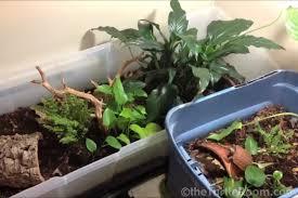how to build a land turtle habitat diy habitat theturtleroomtheturtleroom