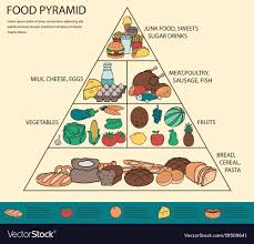 Food Pyramid Project Food Pyramid Healthy Eating Infographic Healthy