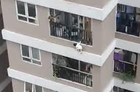 Bé gái 3 tuổi rơi từ tầng 12 chung cư được cứu sống thần kỳ