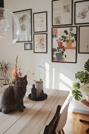 Catcontent Zum Weltkatzentag Couchstyle Cat Ca