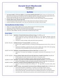 Journeyman Welder Sample Resume Fascinating Free Download Sample Sample Resume For Entry Level Welder Resume
