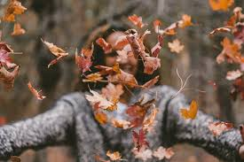 <b>Autumn Woman</b> Pictures | Download Free Images on Unsplash
