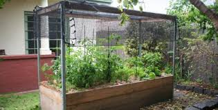 Small Picture Vegetable Garden Design Ideas Get Inspired by photos of