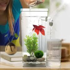 office fish. Lazy Fish Tank Desktop, Small Aquarium, Tank, Mini Goldfish Bowl, Plastic Creative Office, Self-cleaning - Shop @ Ezbuy Singapore Office B