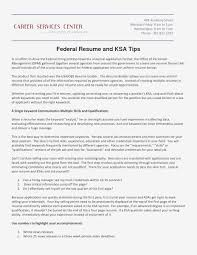 Free Federal Government Resume Templates Government Resume