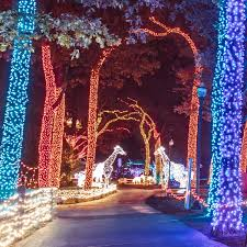 Wild Lights Detroit Zoo Tickets