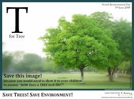 best earth quotes pictures more images earth  save your environment stay happy